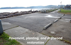 Pavement, planting, and driftwood restoration